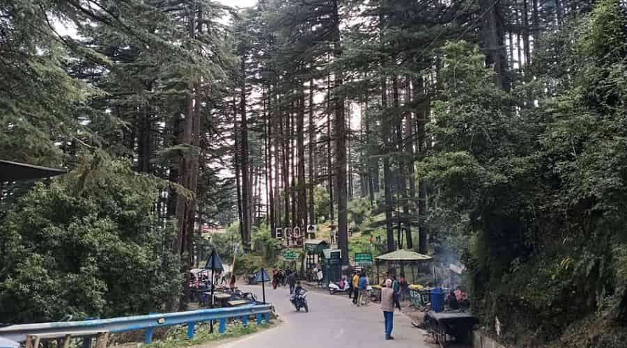 Dhanaulti, Uttarakhand
