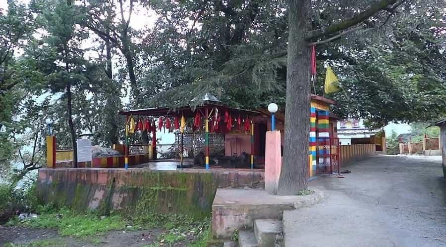 Kalpavriksha Tree, Joshimath