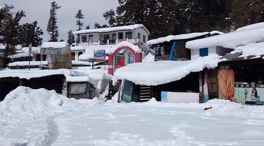 Chopta after Snowfall