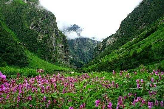 Valley of Flowers & Hemkund Sahib Trek 2018 Package