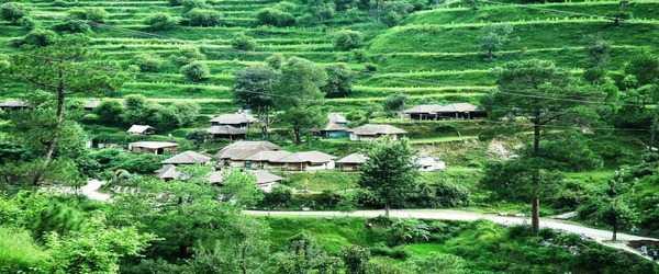 barkot chardham camps