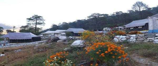 camp nirvana guptkashi